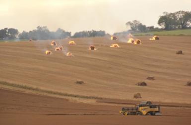 Verbrennen von Ölleinstroh auf dem Feld. © David Hill (credit CC BY-ND 3.0)